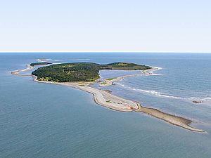 Reids Island