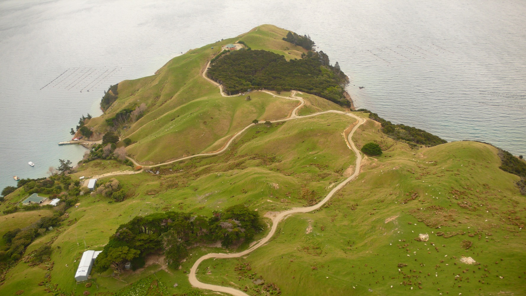 Best Buy Private Auction >> Island Archive - French Pass Peninsula - New Zealand ...