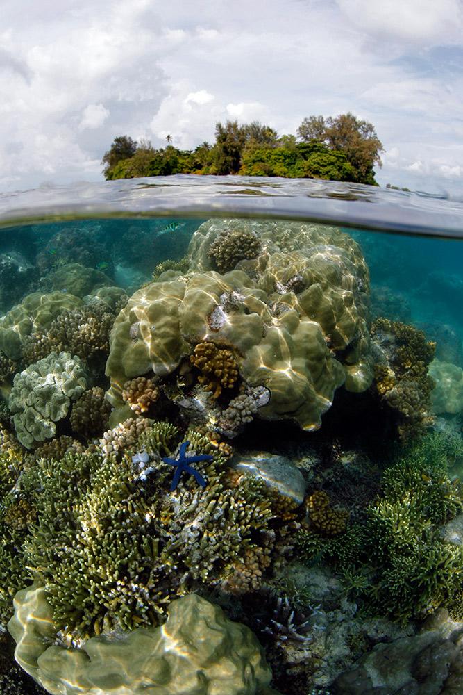 Lissenung Island Resort Papua New Guinea  Of