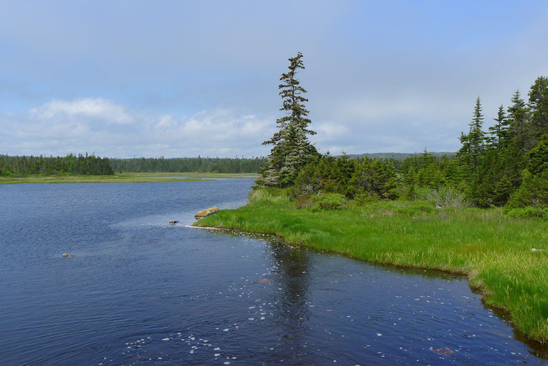 Ocean Property For Sale In Nova Scotia