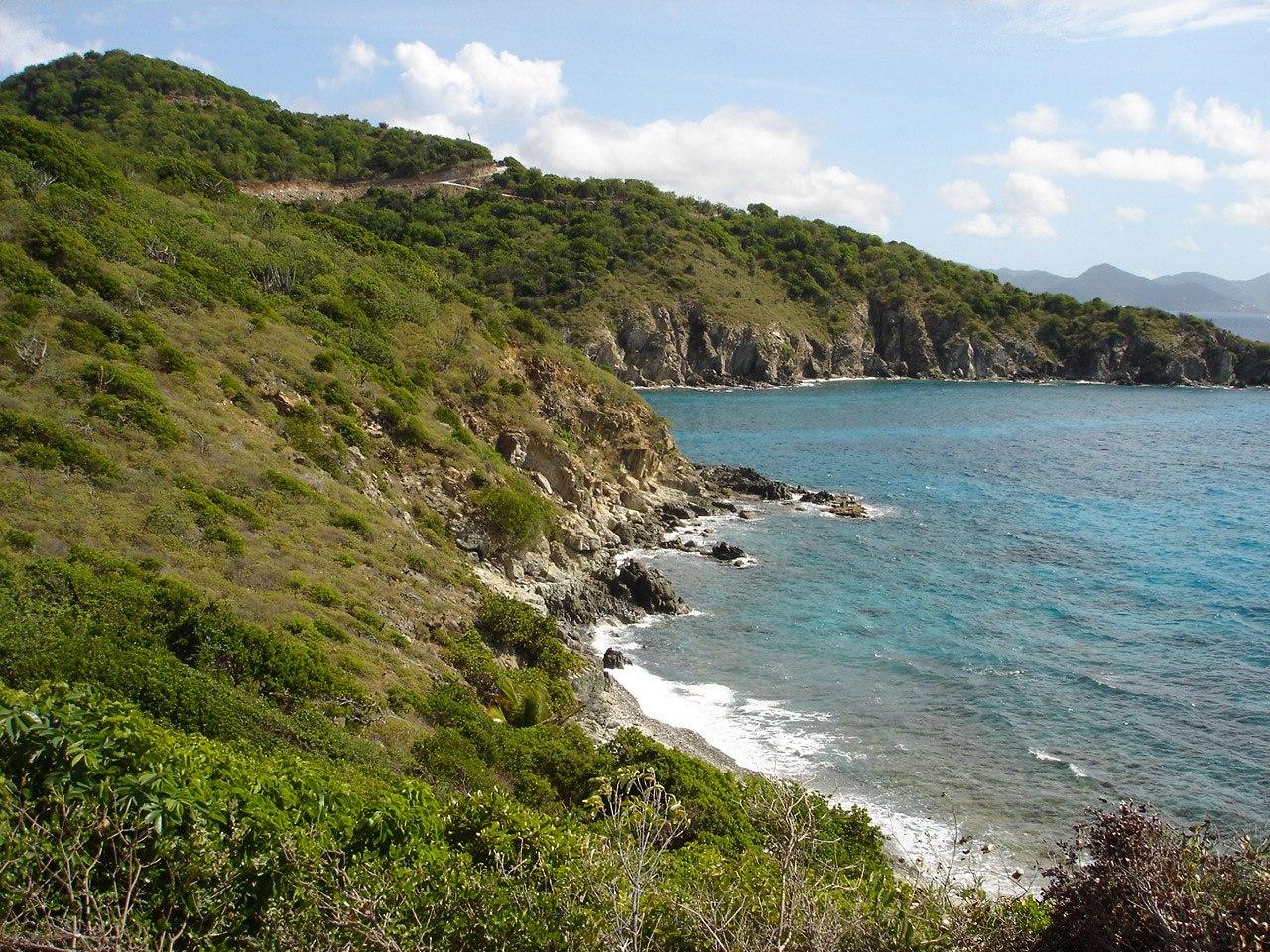Think, Cabrita point virgin islands