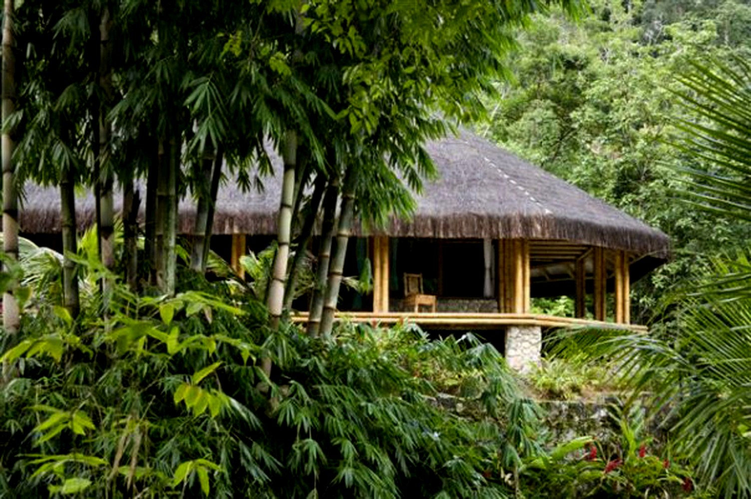 Uncategorized Houses In The Jungle private islands for sale bamboo jungle house brazil south house